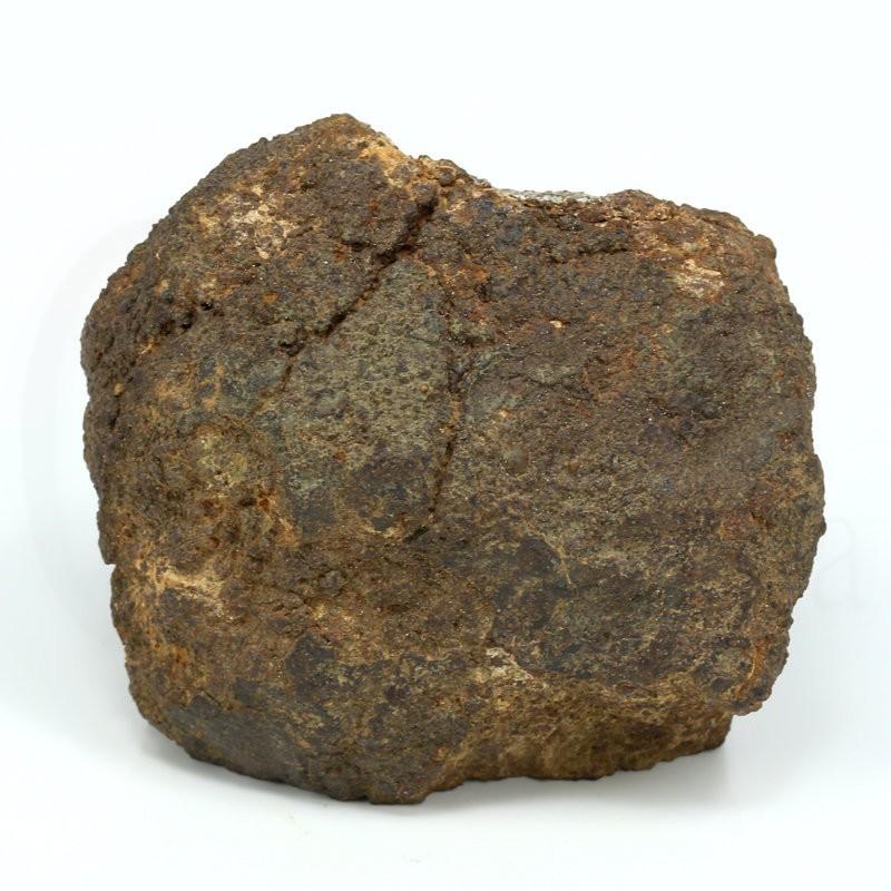 meteorito condrita goronyo