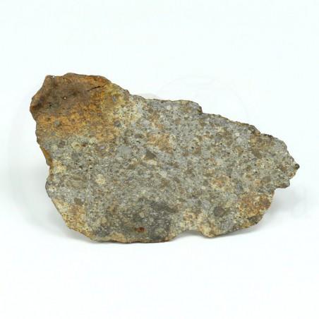 meteorito condrita nwa869