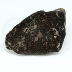 meteorito condrita nwa1465