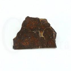 meteorito condrita dhofar