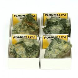 mineral pumpellita