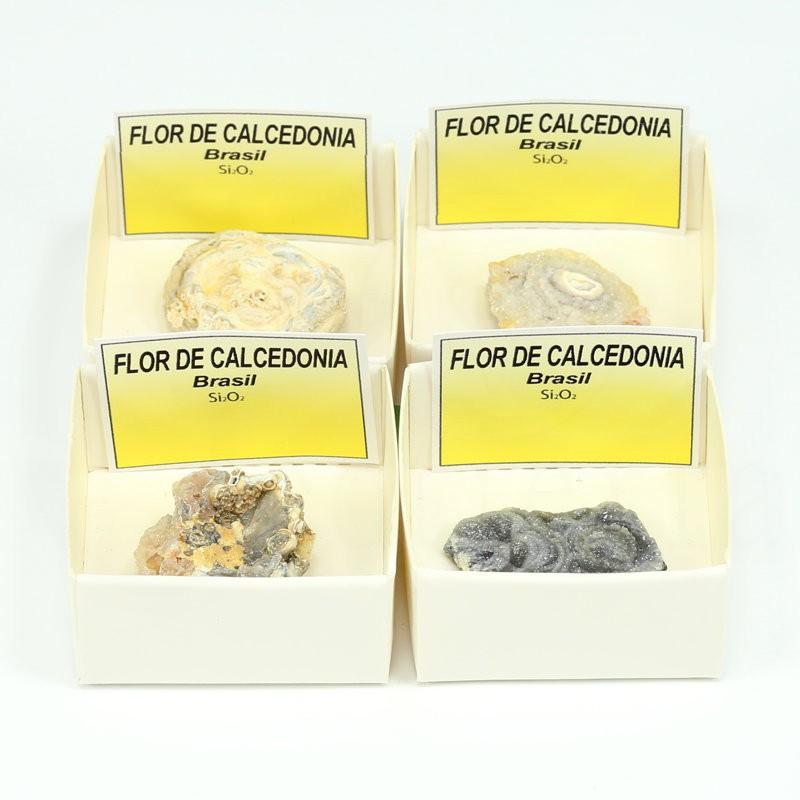 mineral flor de calcedonia