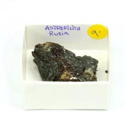 mineral astrofilita
