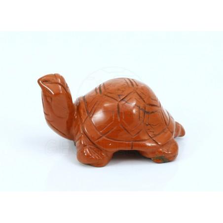 tortuga jaspe rojo