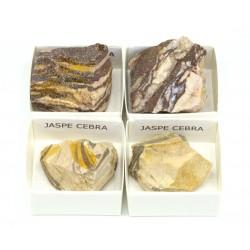mineral jaspe cebra