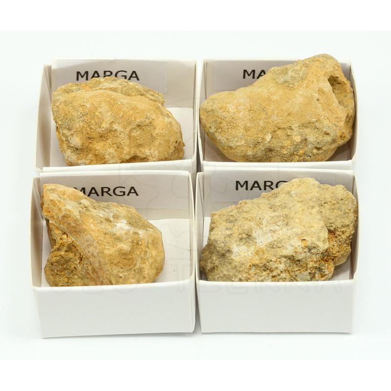 roca marga